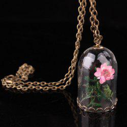 Bird Cage Dried Flower Friendship Necklace