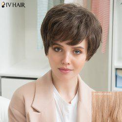 Siv Stunning Human Hair Short Side Bang Fluffy Straight Wig