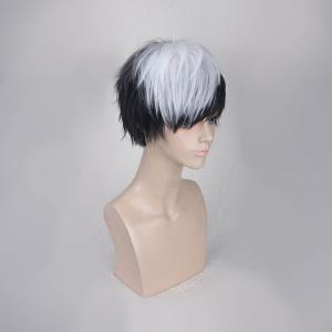 Short Side Bang Straight Synthetic Cosplay Wig - WHITE/BLACK