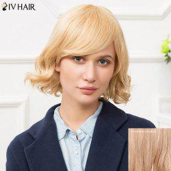 Siv Short Inclined Bang Fluffy Wavy Human Hair Wig