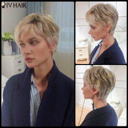 Siv Short Layered Side Bang Straight Human Hair Wig - COLORMIX