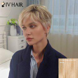 Siv Short Layered Side Bang Straight Human Hair Wig - GOLDEN BROWN WITH BLONDE