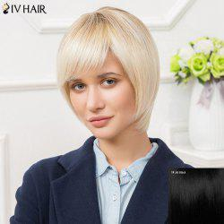 Siv Short Inclined Bang Bobs Haircut Straight Human Hair Wig