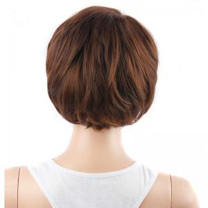 Short Neat Bang Fluffy Straight Mixed Color Synthetic Hair Wig - COLORMIX