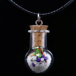 Glass Bottle Dried Flower Necklace