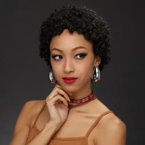 Short Afro Curly Capless Human Hair Wig -