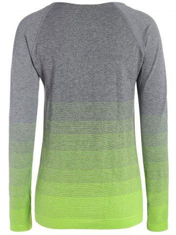 Store Ombre Long Sleeve Running Gym Top With Thumb Hole - L NEON GREEN Mobile