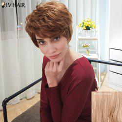 Siv Hair Short Layered Curly Inclined Bang Human Hair Wig
