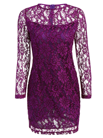 Fancy Floral Lace Sheer Dress with Sleeves
