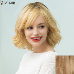 Siv Hair Short Shaggy Curly Inclined Bang Bob Human Hair Wig -