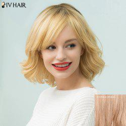 Siv Hair Short Shaggy Curly Inclined Bang Bob Human Hair Wig
