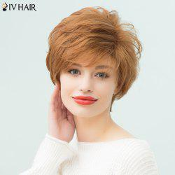 Siv Hair Layered Short Pixie Curly Side Bang Human Hair Wig - AUBURN BROWN #30