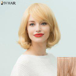 Siv Hair Short Bob Inclined Bang Human Hair Wig
