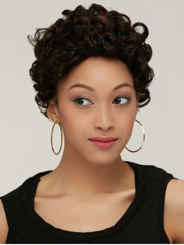 Outfits Black Brown Boy Cut Fashion Short Fluffy Curly Synthetic Wig