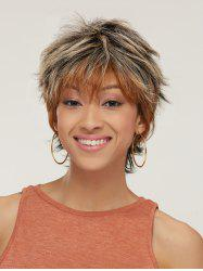 Short Fluffy Slightly Curled Side Bang Mixed Color Synthetic Wig