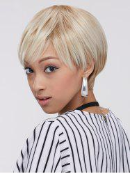 Short Fluffy Full Bang Synthetic Wig