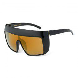 Oversize Reflective Windbreak Alpina Shield Sunglasses