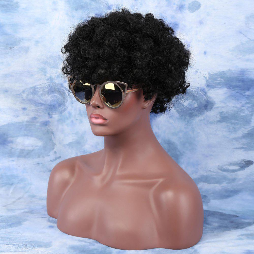 Affordable Short Fluffy Afro Curly Side Bang Synthetic Capless Wig