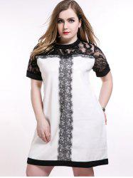 Lace Panel Knee Length Plus Size Dress