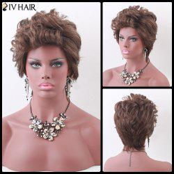 Siv Hair Short Fluffy Color Mix Curly Human Hair Wig