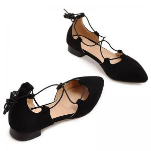 Lace Up Pointed Toe Flat Shoes -