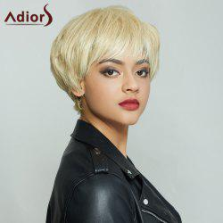 Vogue Short Fluffy Side Bang Mixed Color Women's Synthetic Hair Wig