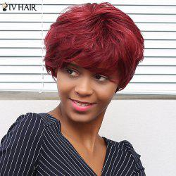 Siv Hair Short Curly Neat Bang Human Hair Wig