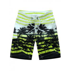 Coconut Tree Imprimer Short rayé