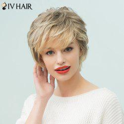 Siv Hair Short Layered Side Bang Human Hair Wig - COLORMIX