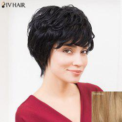 Siv Hair Short Layered Cut Side Bang Fluffy Human Hair Wig
