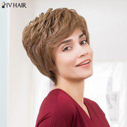 Siv Hair Layered Shaggy Side Bang Short Colormix Human Hair Wig