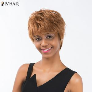 Siv Hair Short Layered Straight Inclined Bang Pixie Human Hair Wig - AUBURN BROWN