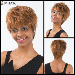 Siv Hair Short Layered Straight Inclined Bang Pixie Human Hair Wig - AUBURN BROWN #30