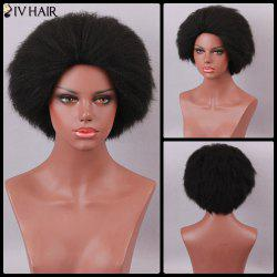 Siv Hair Short Yaki Straight Fluffy Capless Human Hair Wig