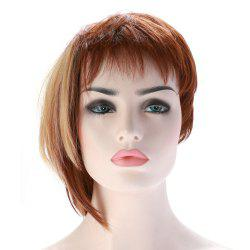 Fashion Short Haircut Soft Straight Blonde Highlight Synthetic Wig For Women