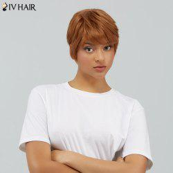 Short Straight Fluffy Neat Bang Human Hair Wig