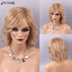 Siv Hair Medium Shaggy Tail Upwards Side Bang Human Hair Wig