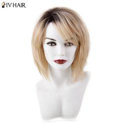 Siv Hair Short Bob Hairstyle Side Bang Capless Human Hair Wig