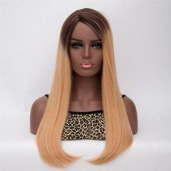 Long Side Parting Straight Mixed Color Women's Graceful Synthetic Hair Wig