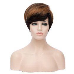 Bouncy Mixed Color Short Fluffy Straight Side Bang Women's Synthetic Wig - COLORMIX