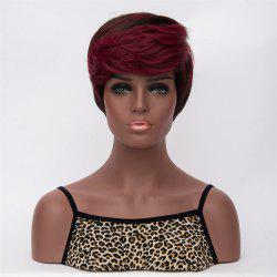 Special Mixed Color Short Fluffy Straight Side Bang Women's Synthetic Wig