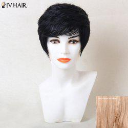 Siv Hair Short Straight Inclined Bang Human Hair Wig