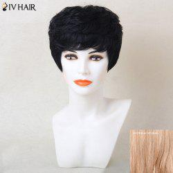 Siv Hair Short Layered Cut Full Bang Human Hair Wig