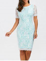 Fitted Knee Length Floral Lace Sheath Dress - LIGHT BLUE
