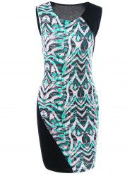 Printed Sleeveless Fitted Dress