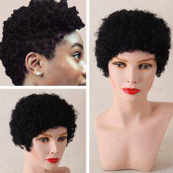 Short Afro Curly Human Hair Wig