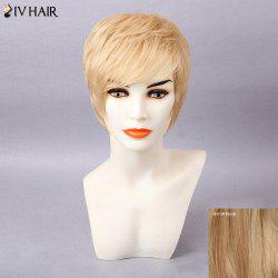 Siv Hair Short Layered Oblique Bang Straight Human Hair Wig