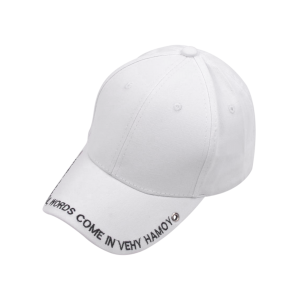 Long Tail Letters Embroidered Baseball Cap - White - S