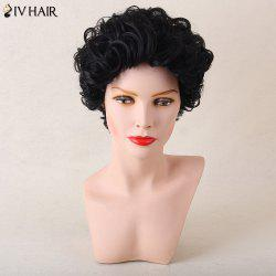 Siv Hair Shaggy Short Afro Curly Human Hair Wig