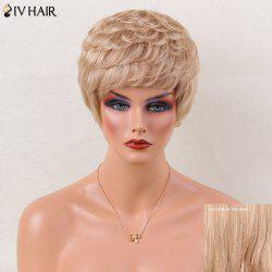 Siv Hair Layered Slightly Curled Full Bang Short Human Hair Wig